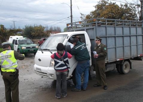 Carabineros realiza Campaña contra el Abigeato en Longaví