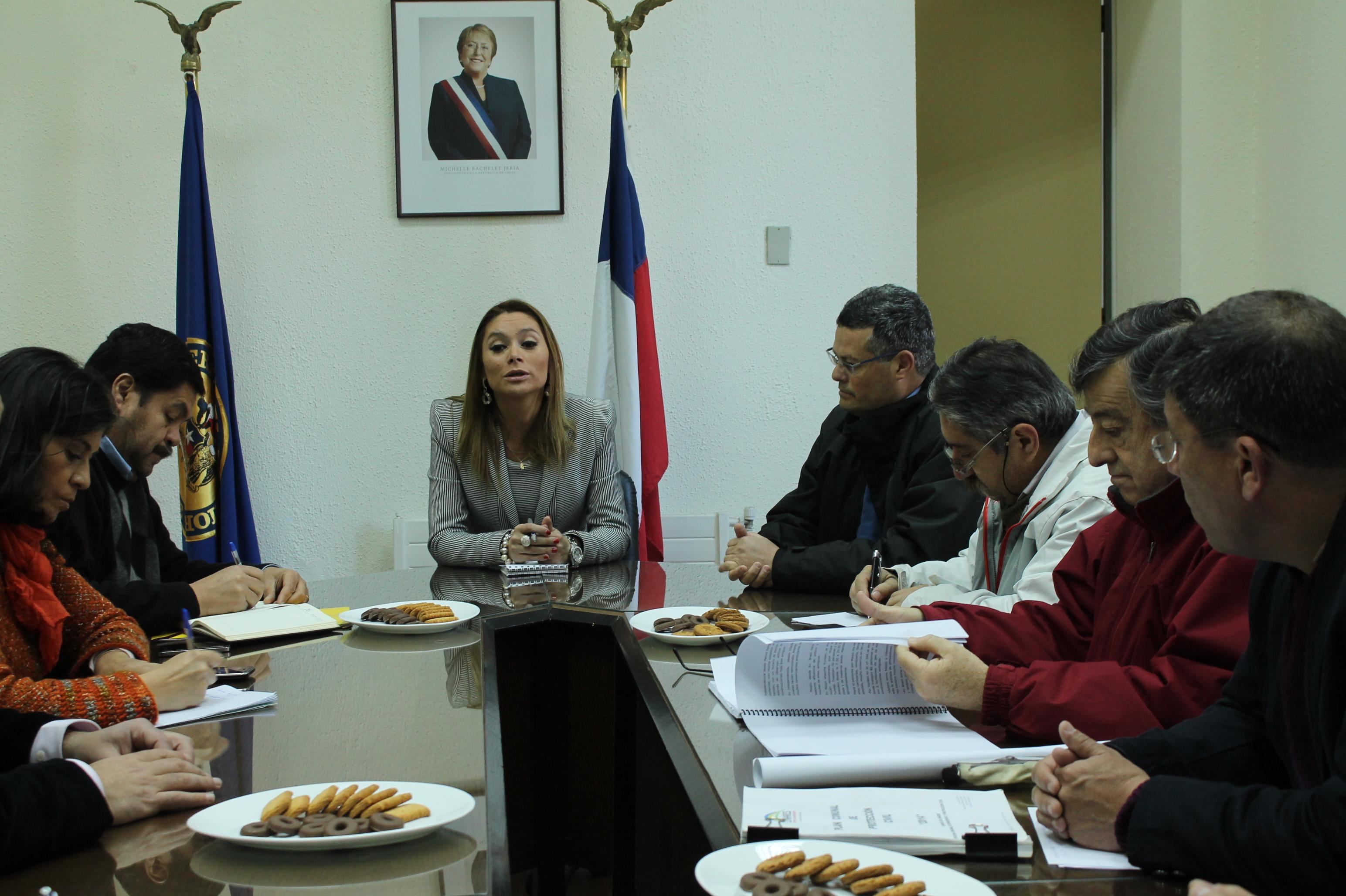Autoridades de Linares se reúnen para trabajar en seguridad ciudadana