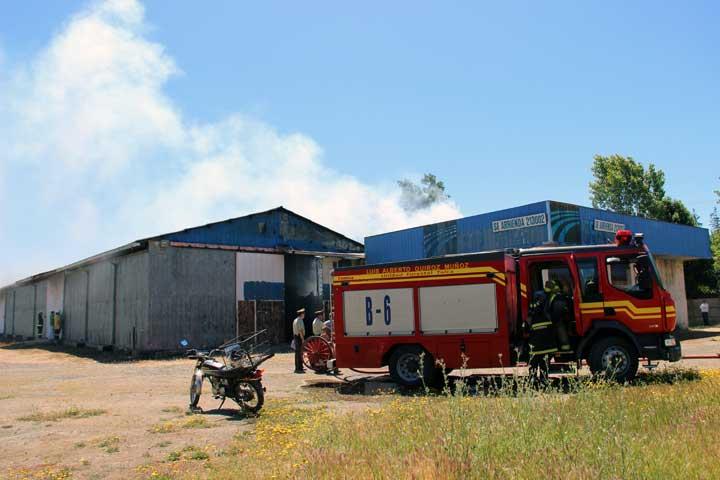 Incendio en Sector Oriente Moviliza a Bomberos en Talca