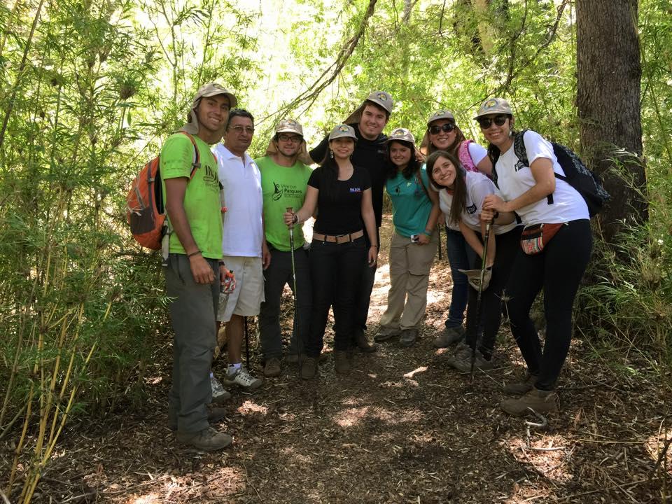 Voluntarios Trabajan en Mejoramiento de Radal 7 Tazas