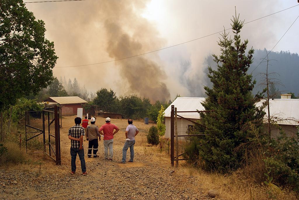 Incendios Forestales Afectan a Pencahue
