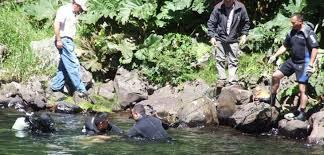 Dos Hermanos Mueren Ahogados en Río Mataquito en Hualañe