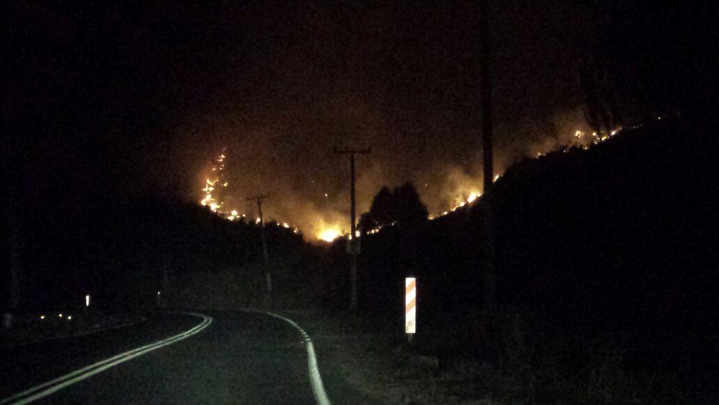Incendio Afecta Cerro El Águila en Maule