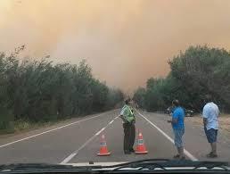 Una casa y un galpón destruidos dejó incendio forestal en Nirivilo
