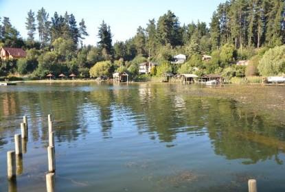 Sigue preocupación por el estado de las aguas en Lago Vichuquén