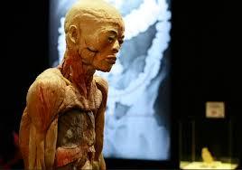 Exposición Bodies llega a la ciudad y promete cambiar la forma de ver el cuerpo humano