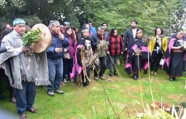 Buscan Líderes mapuches en el Maule