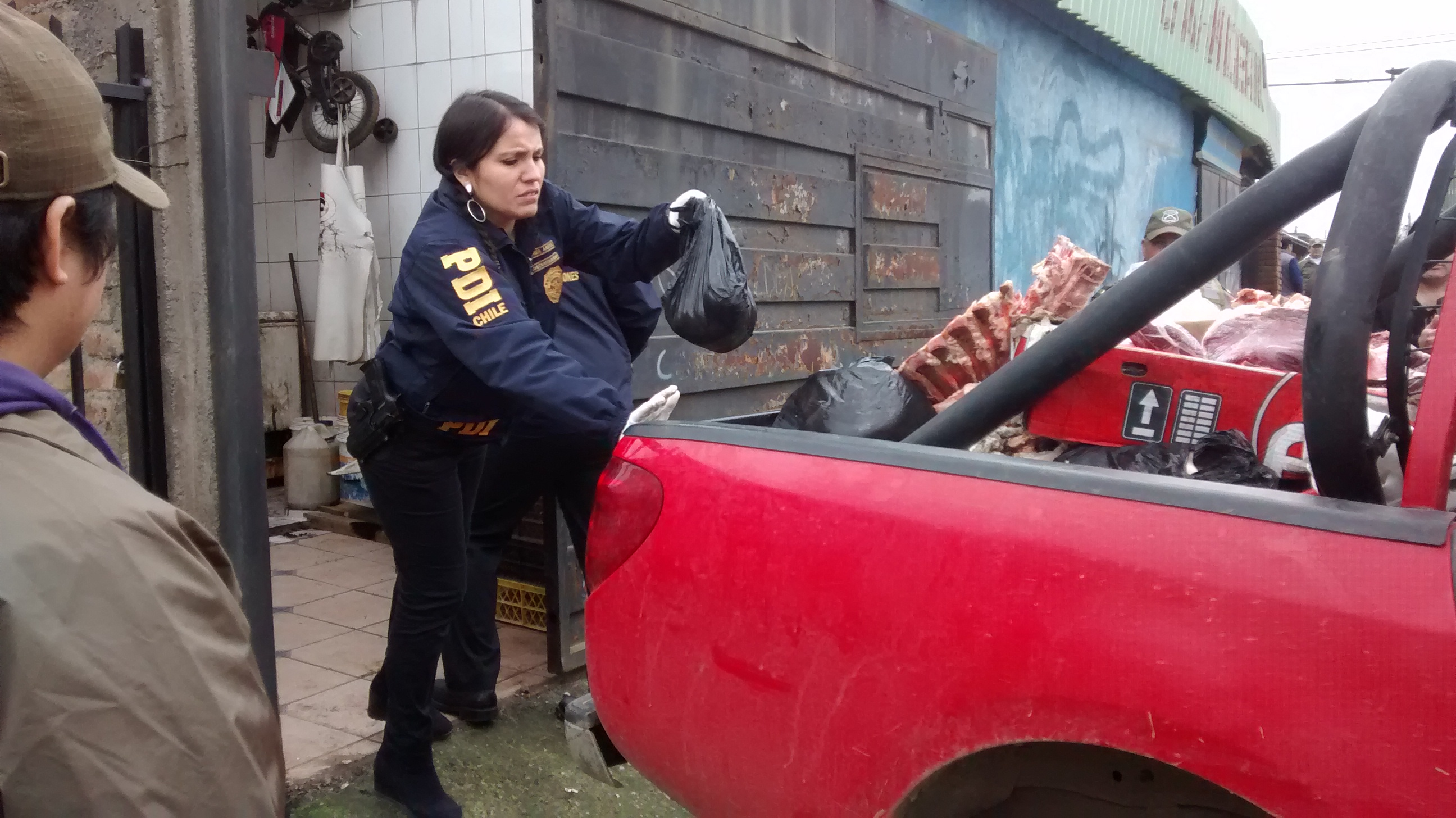 Más de 250 kilos de carne en mal estado fueron incautados desde carnicería en Talca