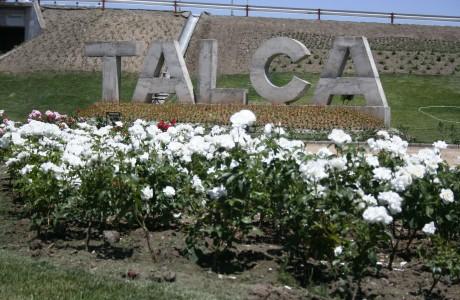 12 de febrero será feriado en Talca