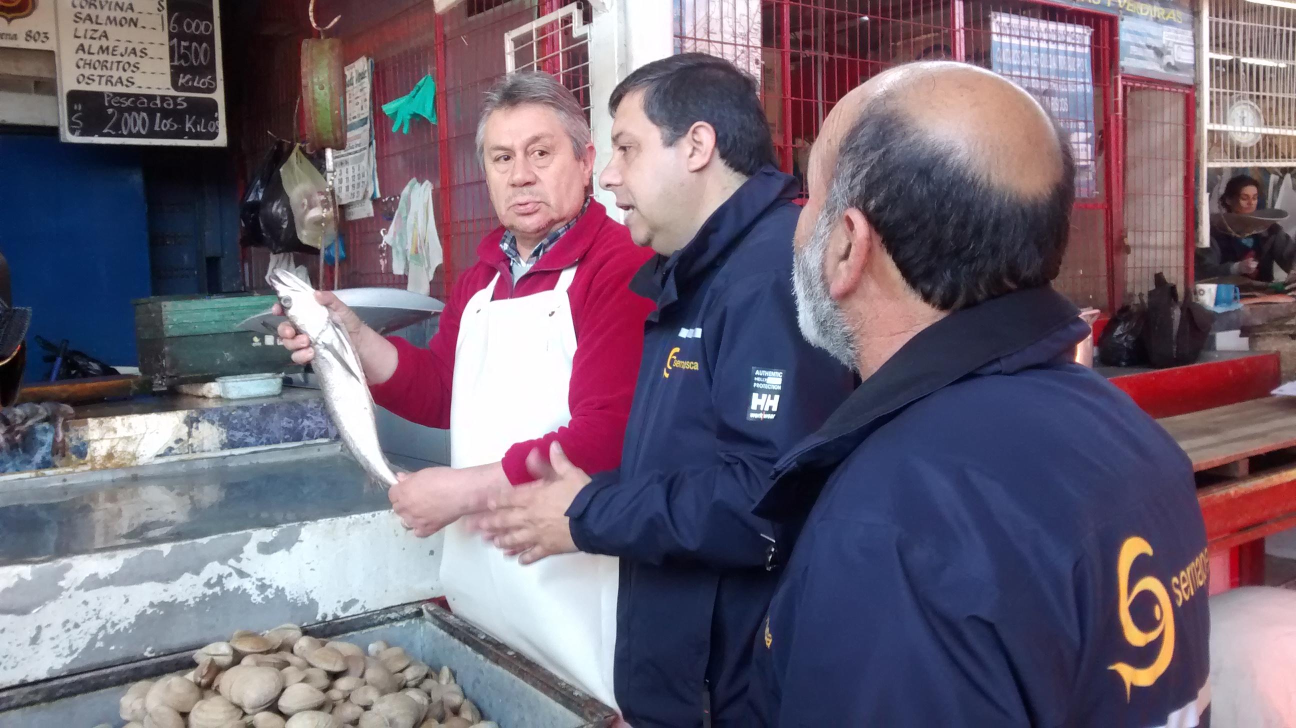 Inician campaña sobre veda de la merluza en Talca