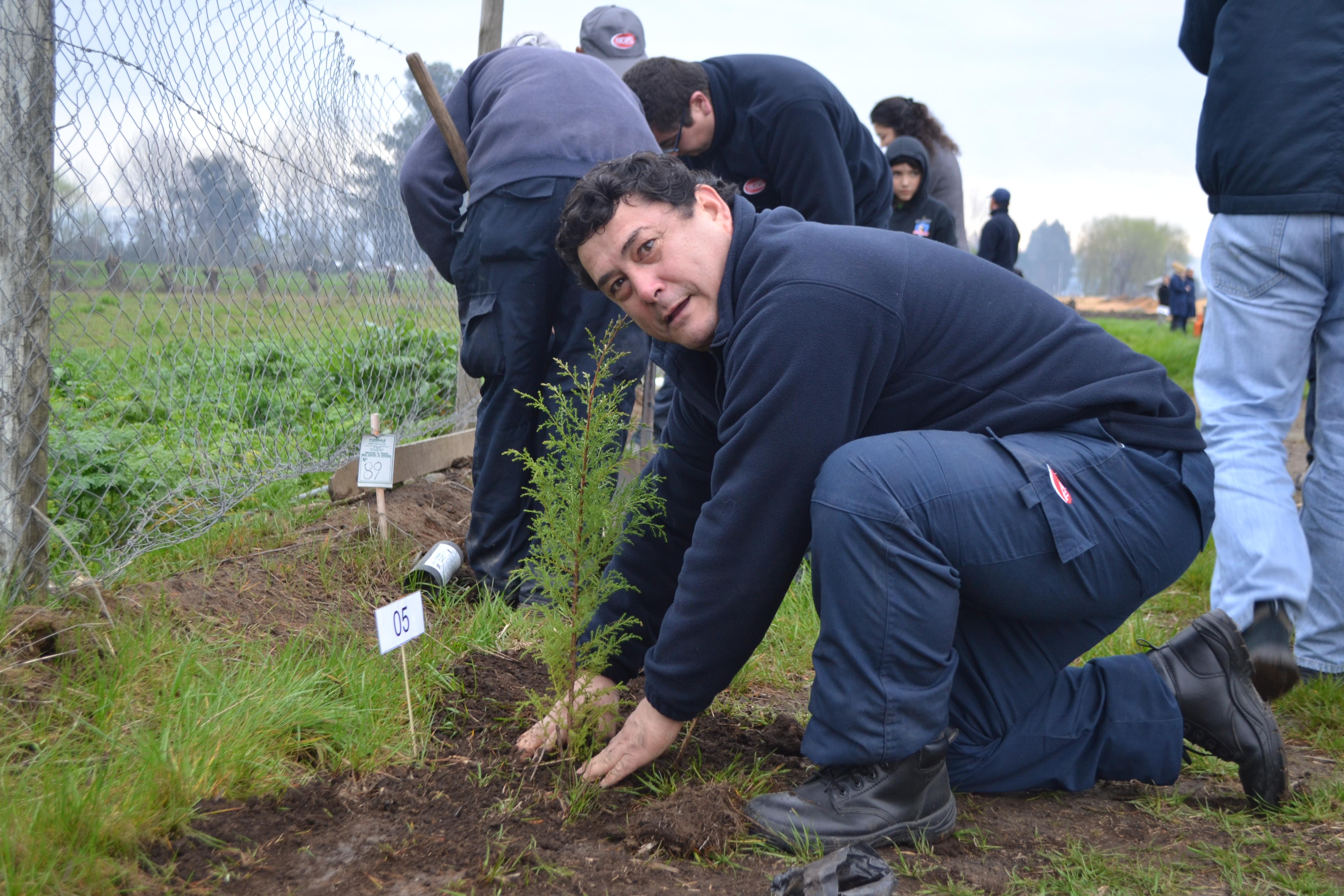Plantan más de 700 árboles en Retiro