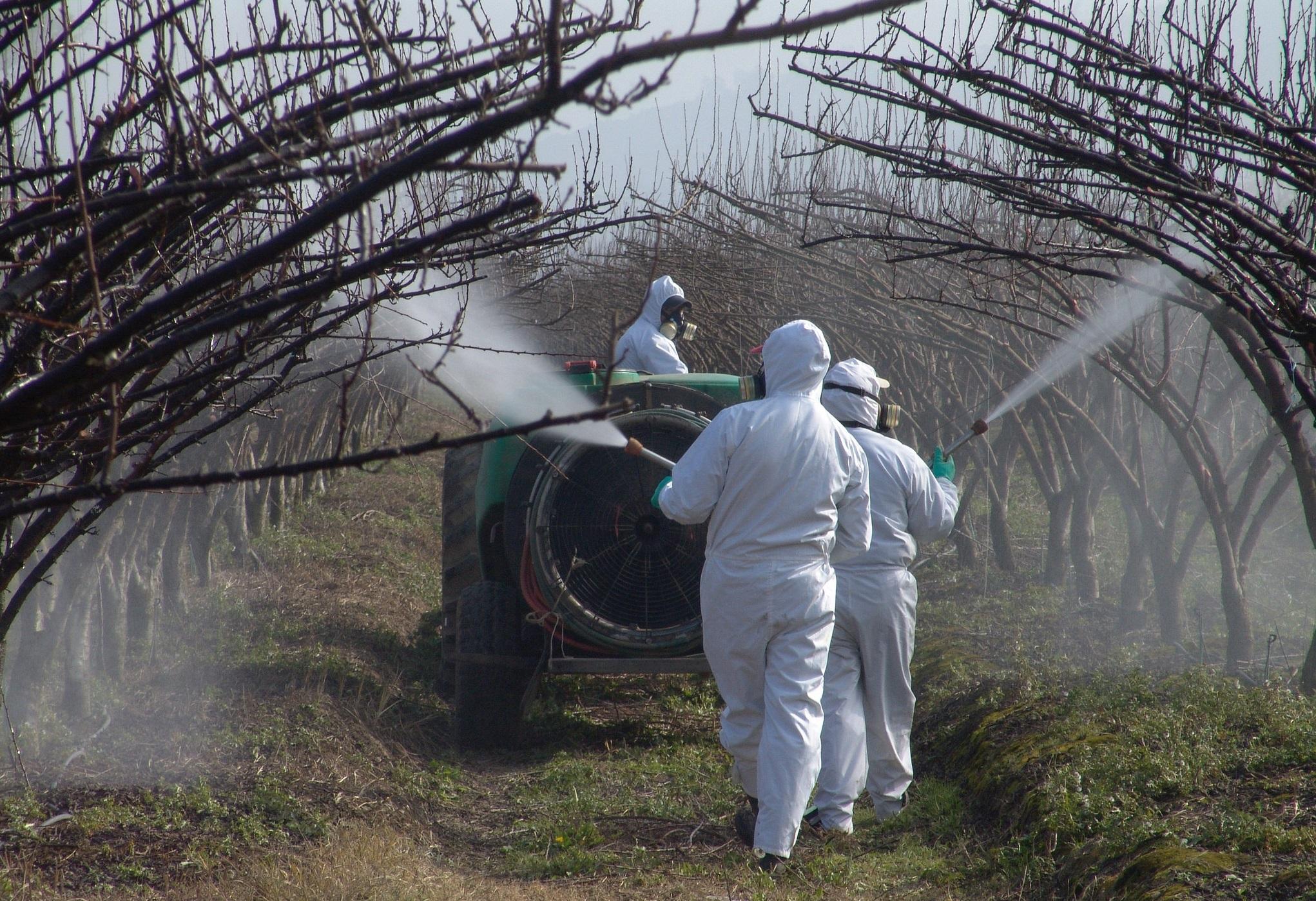 Incentivan al uso correcto de plaguicidas en primavera para la protección apícola