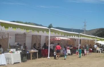 Gran fiesta costumbrista de Colín revivió las tradiciones chilenas