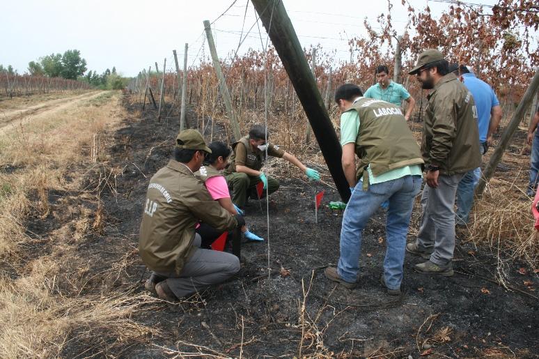 Carabineros capacitó a su personal en investigación de incendios forestales