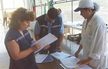 Arduo trabajo de fiscalización en inspección del trabajo