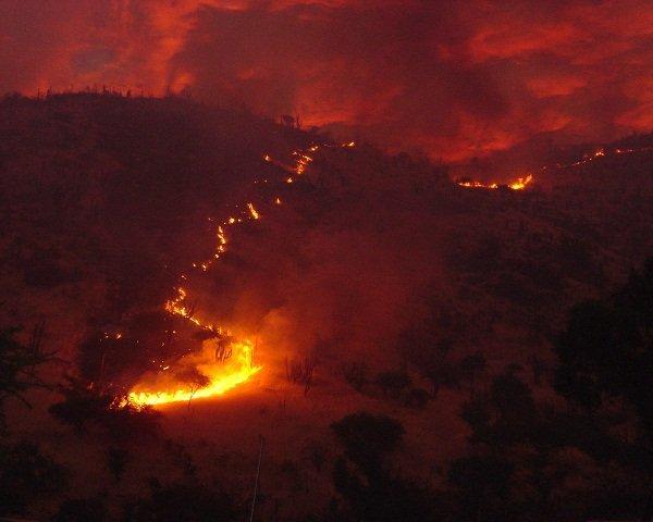 PDI y Conaf realizaron llamado a prevenir incendios forestales