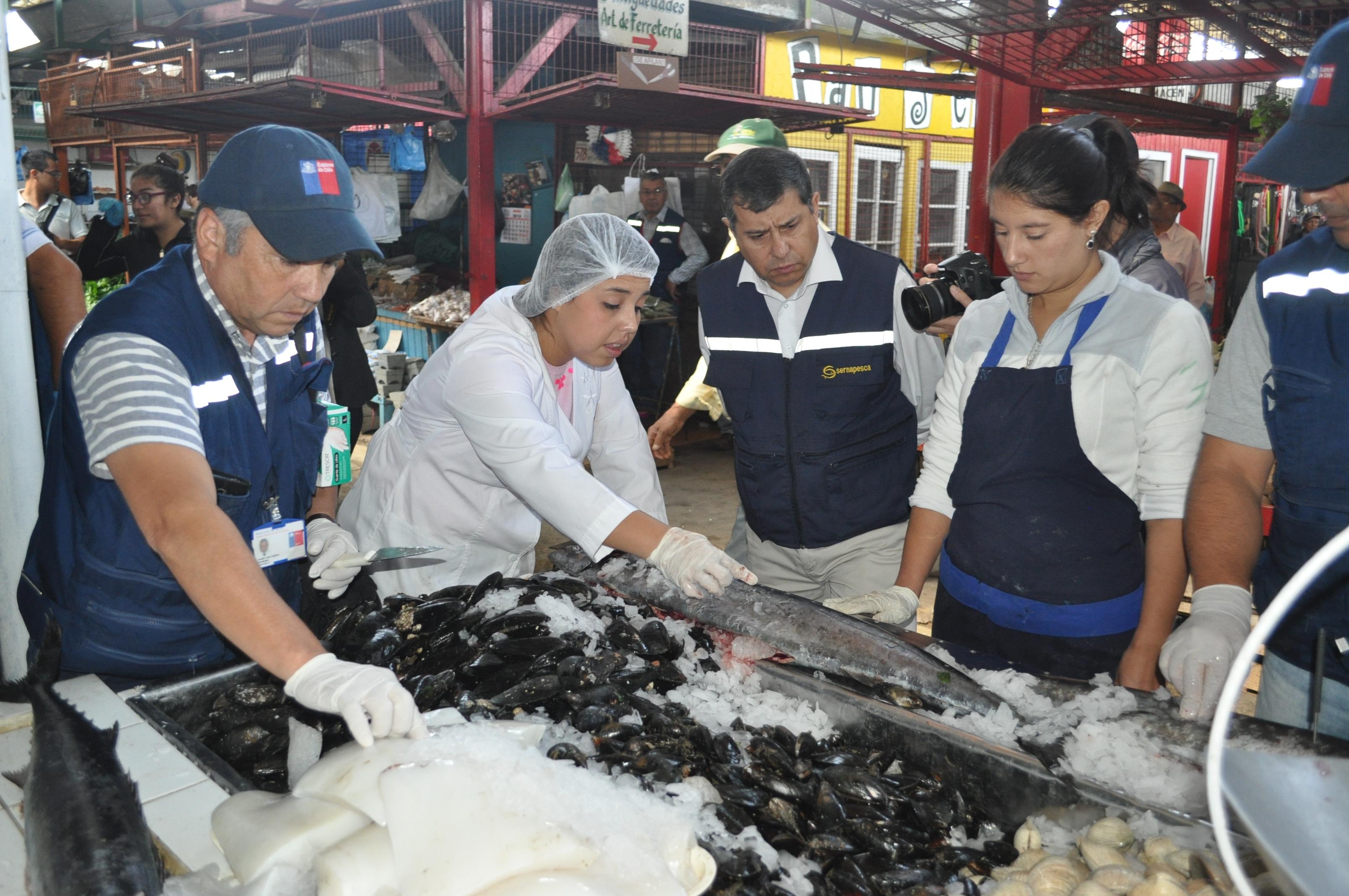 Seremi de Salud y Sernapesca refuerzan compra de pescados y mariscos en lugares autorizados