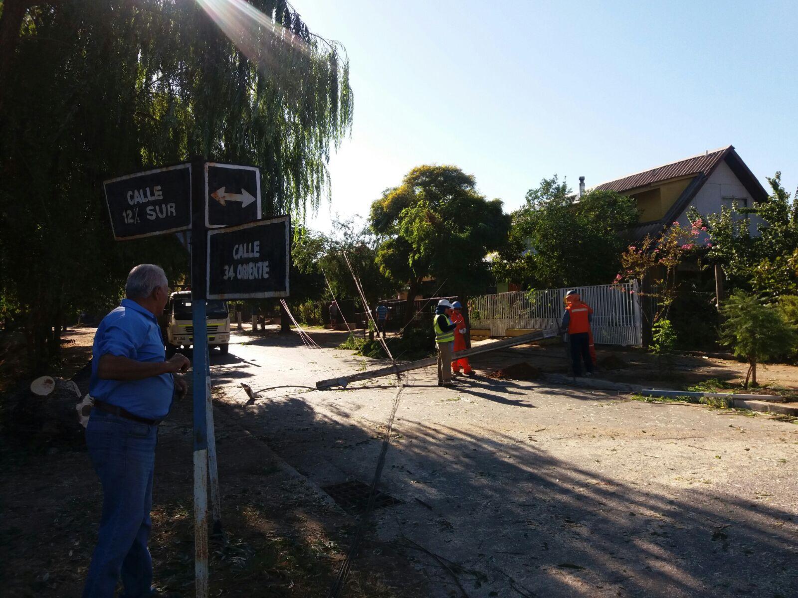 Árbol de grandes dimensiones cae sobre tendido eléctrico, destruye dos postes de cemento y deja sin luz a un sector de la población San Antonio en Talca