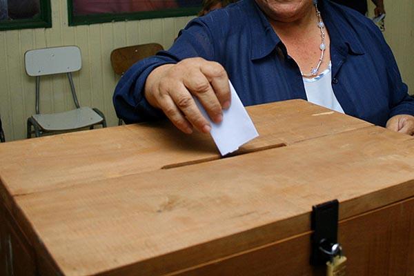Acogen recurso de bloque oficialista sobre primarias municipales