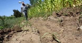 Fuerte déficit hídrico en zonas rurales