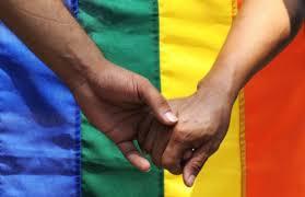 Gobierno anuncia envío de proyecto de matrimonio igualitario