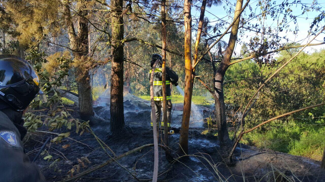 Violento incendio se registró en 9 oriente con 30 sur en Maule