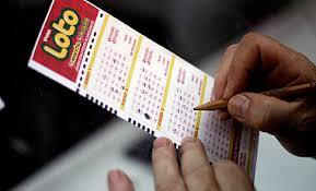 Hoy se juega millonario Loto, ¿qué haría si se gana el premio mayor?