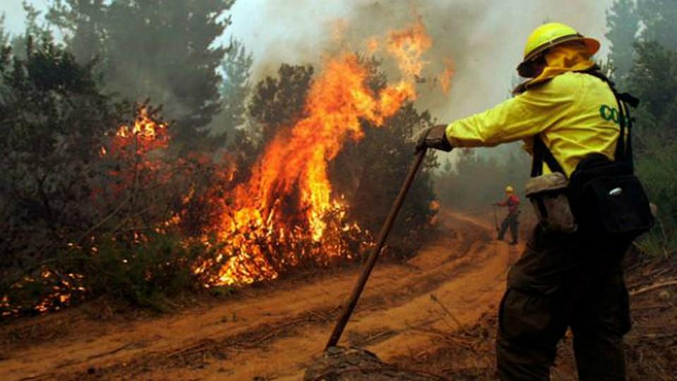 Alerta por incendios forestales entre Coquimbo y el Maule