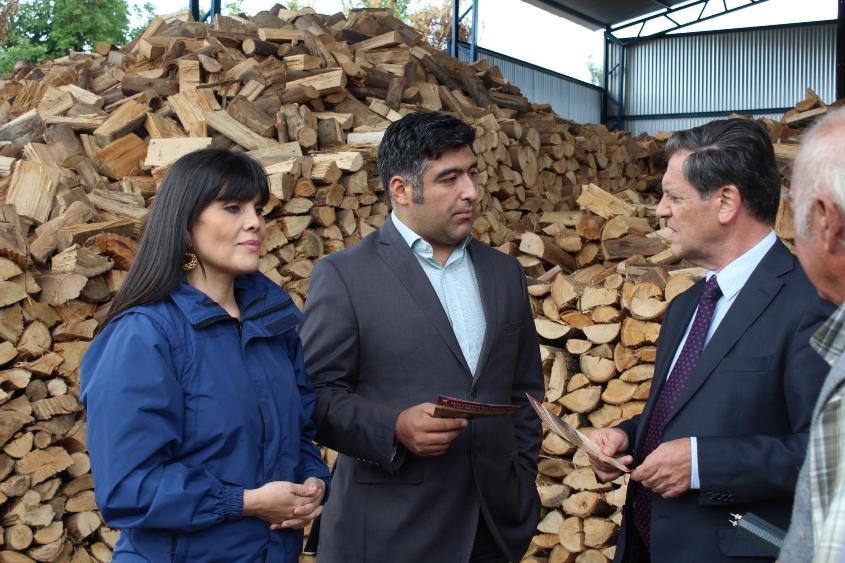 """Inédito proyecto para crear un """"supermercado de leña"""" en el Maule"""