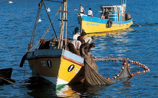 Recursos destinados para la pesca artesanal en la región
