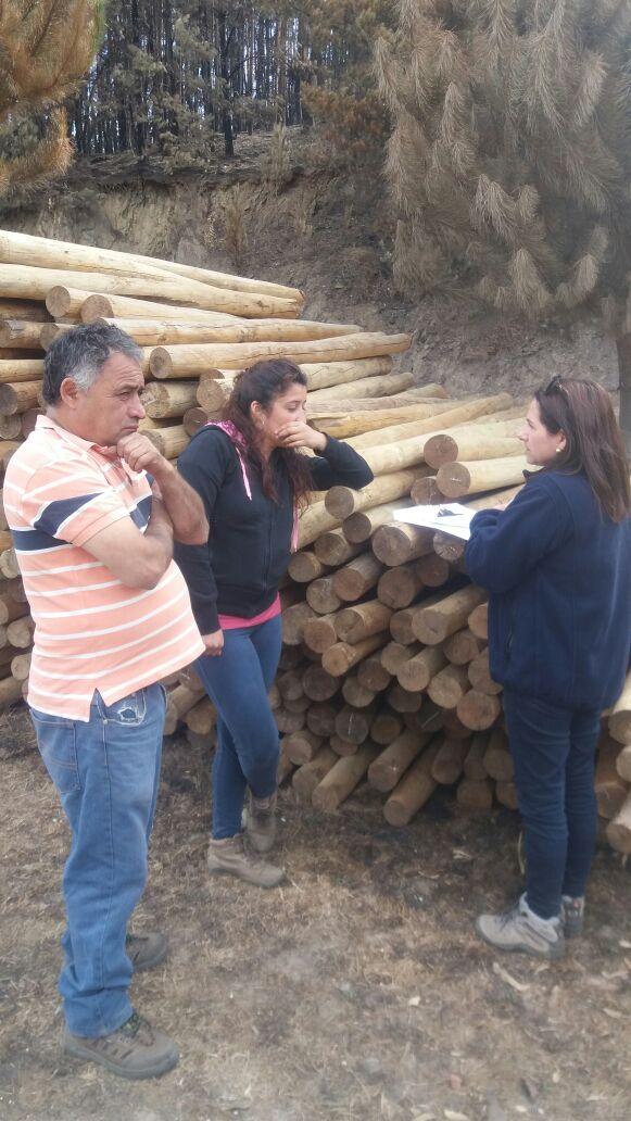 Sernapesca también aplicará la ficha económica para emprendedores afectados por incendios