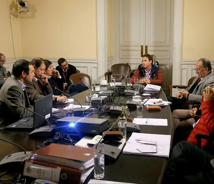 CATÁSTROFE AGRÍCOLA SUFRIERON TOMATEROS DE COLÍN, UNIHUE Y MAULE.