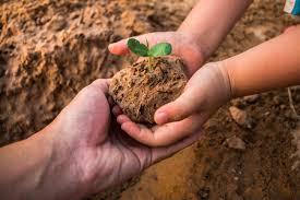 Abiertas postulaciones al Fondo de Protección Ambiental
