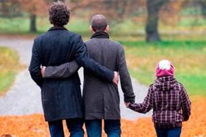 Proyecto matrimonio igualitario incluye la adopción