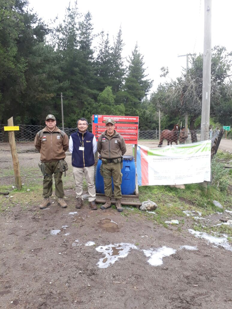 Campaña contra el didymo en rios y lagos del Maule