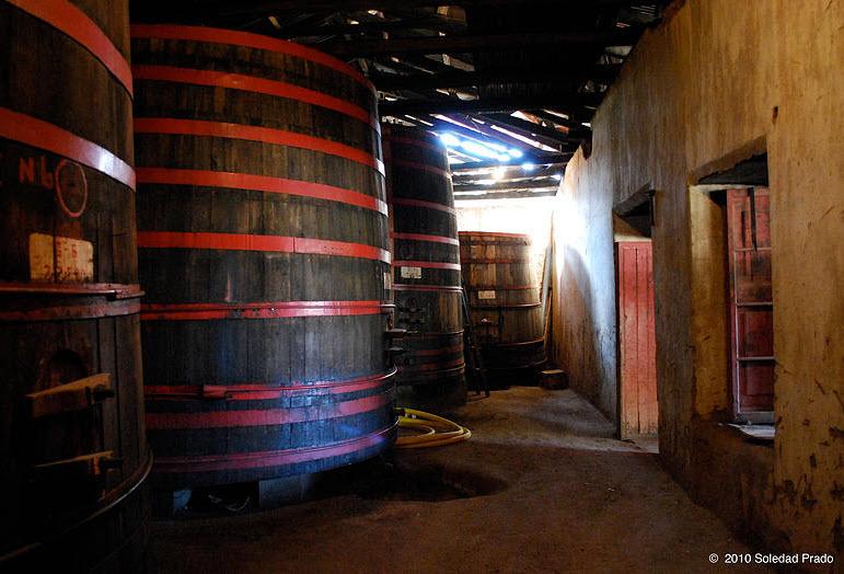 SAG realiza fiscalizaciones en bodegas de vino en regiones