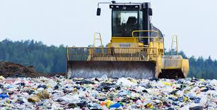 Hoy se celebra el Día del Medio Ambiente