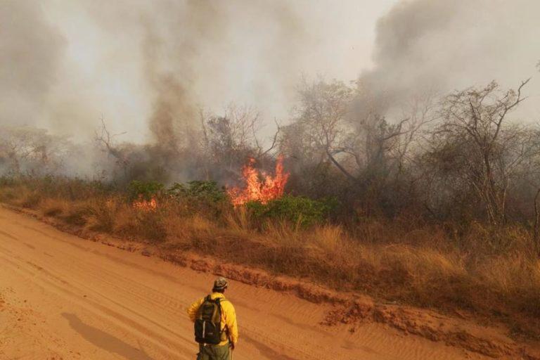 Sequía podría producir más incendios