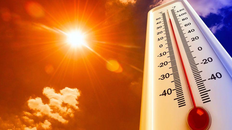 Ola de calor en el Maule