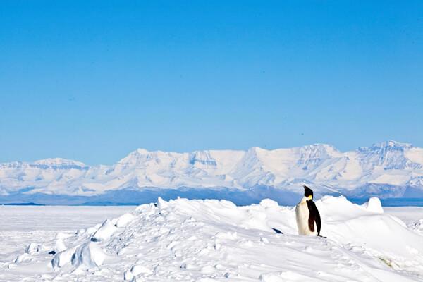 UTalca realizará taller sobre la Antártica dirigido a estudiantes de Enseñanza Media