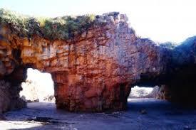 Destacan creación de nuevo santuario de la naturaleza en la zona costera del Maule