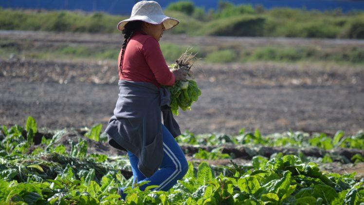 CNR compromete apoyo a mujeres rurales