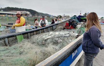 Sernapesca Maule invita a pescadores y pescadoras a promocionar sus recursos en el nuevo portal Caleta en Línea