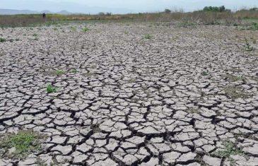 Gobierno anuncia Observatorio de Cambio Climático