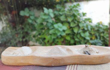 Hub Alimentos UTalca apoya a emprendedoras que producen harina de grillo y un biodigestor