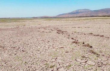 CORECC del Maule: informan sobre proceso para Estrategia Climática de Largo Plazo e iniciativas financiadas por el Gobierno Regional