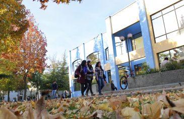 Universidad Católica del Maule anuncia nueva experiencia formativa gratuita al servicio de la comunidad: Aula Abierta UCM