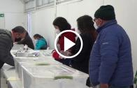 En el Maule se disminuyó los recintos de votación para las elecciones primarias, por lo que se recomendó revisar en el sitio web del SERVEL el lugar de sufragio
