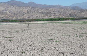 Región del Maule: realizan taller ciudadano por Consulta Pública de la Estrategia Climática de Largo Plazo de Chile