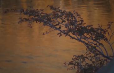 Seremi de obras públicas indicó que no se puede intervenir el río Achibueno